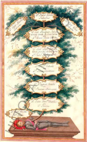 Árbol genealógico de María Luisa Catoyra. Descendiente del mariscal don Suero Gómez de Sotomayor, y esposa del conde de las Cinco Torres.